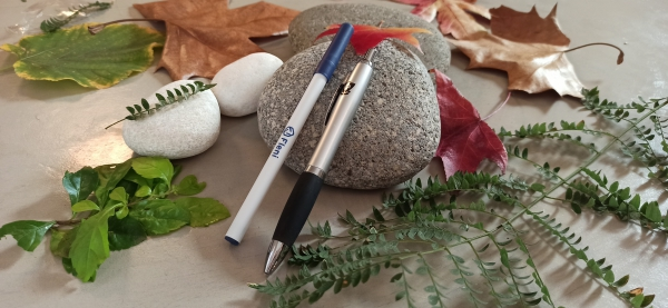 Bolígrafos y lápiz